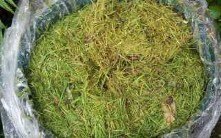 Как приготовить травяной настой для подкормки растений – рецепты