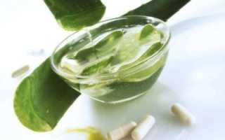 Алоэ при онкологии: противопоказания, состав, применение сока и мякоти растения в лечении рака, рецепты приготовления лекарства в чистом виде, с кагором, с медом