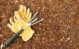 3 способа улучшить почву с помощью опилок