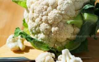 Как засолить цветную капусту: пошаговая инструкция по приготовлению в домашних условиях, а также рецепты, которые помогут вкусно и быстро законсервировать овощ