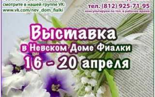 Выставки на 2020г: дача, сад, цветы, ландашфт, усадьба (Санкт-Петербург, СКК и КВЦ «Евразия»)