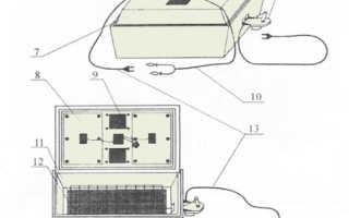 Инкубатор «Золушка»: преимущества и недостатки