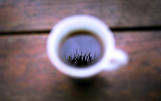 Как использовать отходы кофе из кофемашины