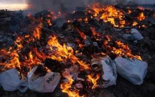 4 секретных места, где можно сжечь мелкий дачный мусор