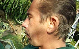 Как бороться с листоверткой на смородиновых кустах