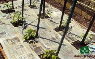 Биотопливо для растений. Создаем тепло в холода