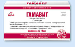 «Гамавит» для сельскохозяйственных и домашних животных: дозировка, инструкция по применению