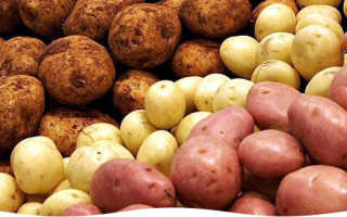 Видео картошка как вырастить самому