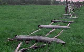Как оформить заброшенный дачный участок в собственность