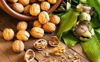 Домашние лекарства из перегородок грецких орехов