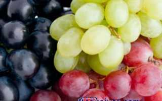 Виноград – польза, какой полезнее черный, белый или синий