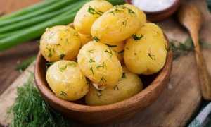 Имеет ли картофель полезные свойства, и какой вред он может принести