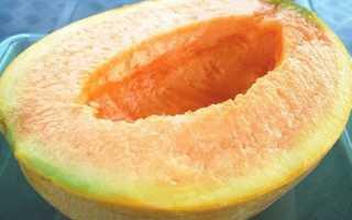 Дыня оранжевая внутри: почему мякоть таким цветом, название и описание сортов