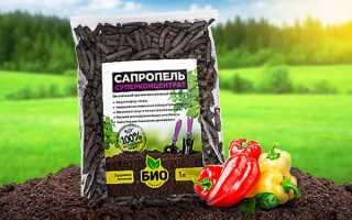 Как использовать сапропель как удобрение, ценность, описание свойств, дозы внесения, рекомендации