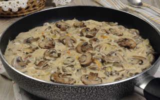 Грибной соус из вешенок со сливками: рецепты с фото